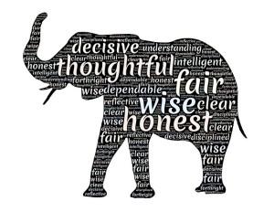 elephant-656439_640
